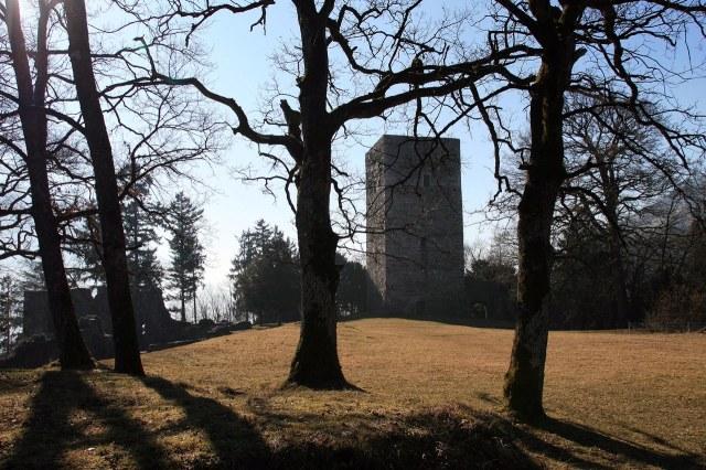 De ruïne Tosters met de bergfried goed zichtbaar